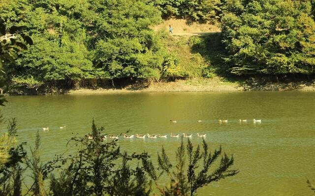 Ağva-saklı-göl