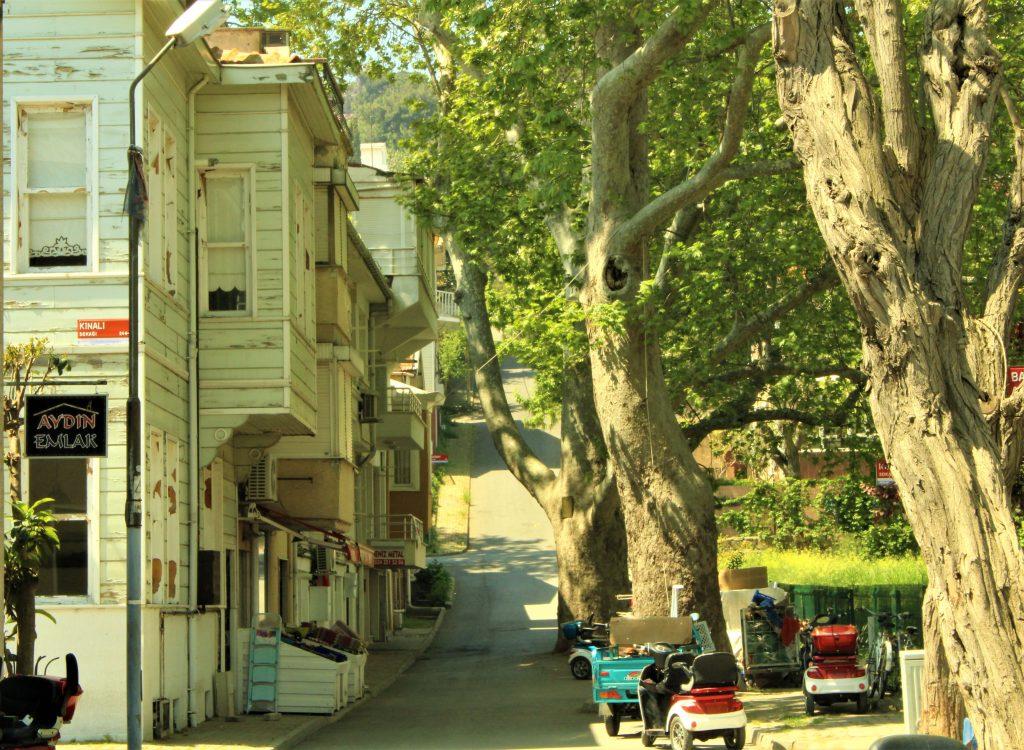 Kınalıada, Ada sokakları, çınar, asırlık çınarlar