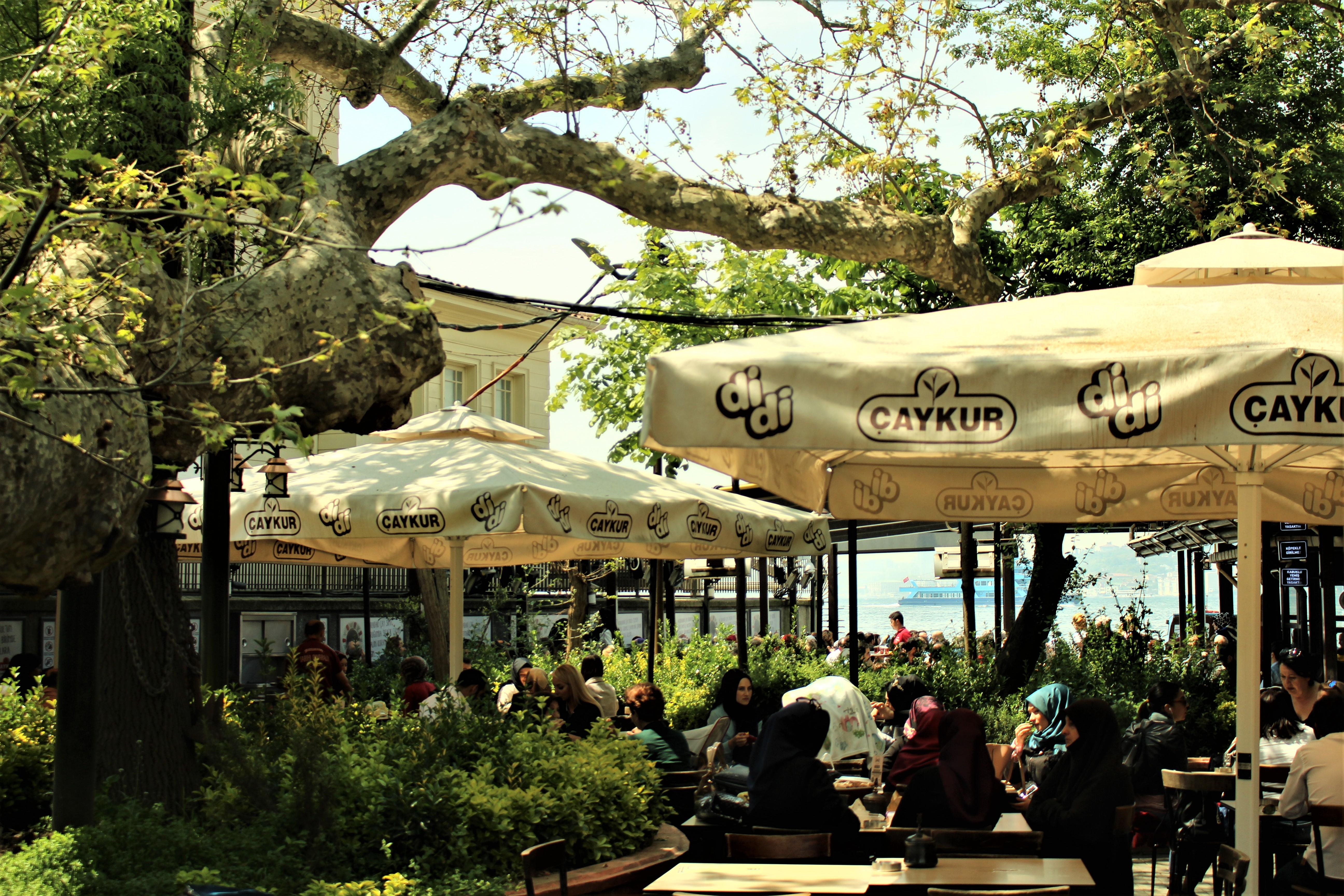 Çengelköy, tarihi çınarlaltı çay bahçesi, İstanbul
